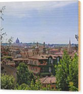 Rome Rooftop Wood Print