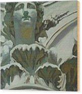 Rome Statue Wood Print