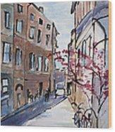 Rome Street Scene IIi Wood Print