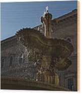 Rome's Fabulous Fountains - Piazza Farnese Fountain Wood Print