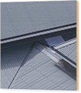 Roof Lines - Montague Island - Australia Wood Print