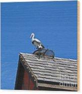 Roof Top Bird Wood Print