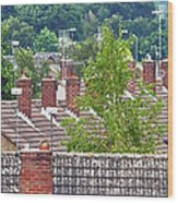 Rooftop Communication Wood Print