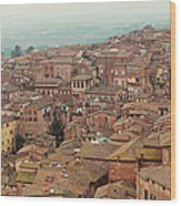 Rooftop View Of Siena Italy Wood Print