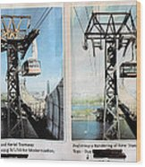 Roosevelt Island Tramway Wood Print