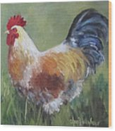 Rooster Of Color Wood Print