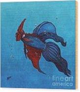 Roosterfish IIi Wood Print