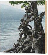 Root Of Beauty Wood Print