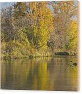 Root River Autumn 1 Wood Print