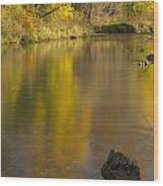 Root River Autumn 2 Wood Print