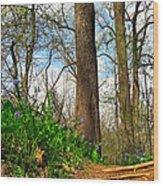 Root Steps Wood Print