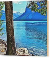 Rooted In Lake Minnewanka Wood Print