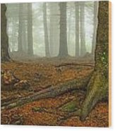 Rooted-pano Wood Print