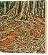 Roots 5 Wood Print