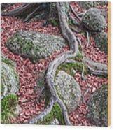 Roots Wood Print by Edward Fielding