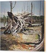 Roots Of Beauty Wood Print
