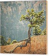 Roots Rock Wood Print