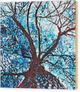 Roots To Branches II Wood Print