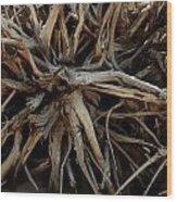 Rooty Wood Print