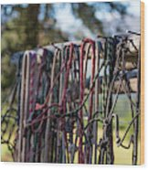 Rope Halters For Horses Lined Wood Print