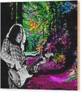 Rockin' On Mt Tamalpais Wood Print