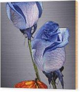 Rosa Azul With Orange Wood Print