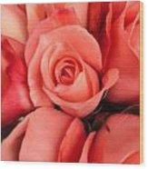 Rosa Central Wood Print