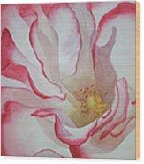 Rosa Wood Print