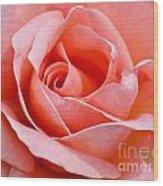Rosa Summer Lady  Wood Print