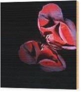 Rose 009 Wood Print