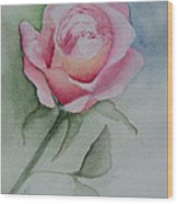 Rose 1 Wood Print by Nancy Edwards