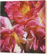Rose 115 Wood Print