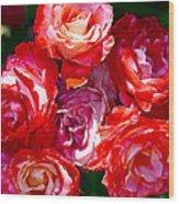 Rose 124 Wood Print by Pamela Cooper