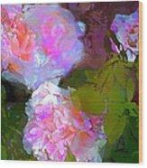 Rose 184 Wood Print by Pamela Cooper