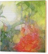 Rose 190 Wood Print