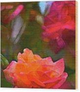Rose 191 Wood Print by Pamela Cooper