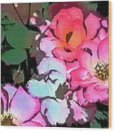 Rose 197 Wood Print by Pamela Cooper