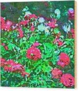 Rose 201 Wood Print