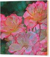 Rose 203 Wood Print by Pamela Cooper
