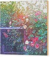Rose 205 Wood Print