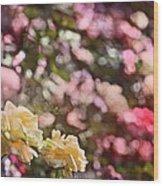 Rose 209 Wood Print by Pamela Cooper