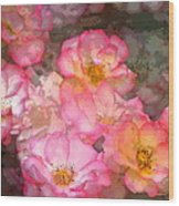 Rose 210 Wood Print by Pamela Cooper