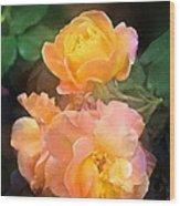 Rose 221 Wood Print