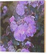 Rose 238 Wood Print