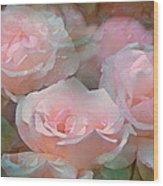 Rose 243 Wood Print