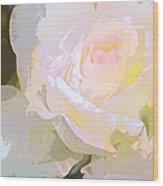 Rose 254 Wood Print