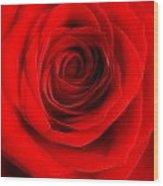 Rose 6 I Love You Wood Print
