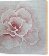 Rose Absolute Wood Print