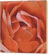 Rose Abstract Wood Print by Rona Black