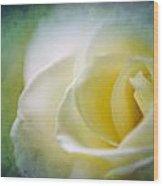 Rose Again Wood Print